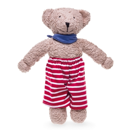 Picture of Teddy bear with seaside clothing